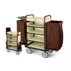 Luggage carts for guest use